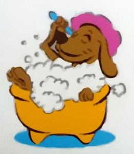 Image: Dog in mini spa