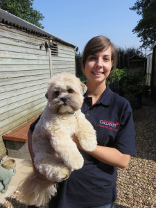 PHOTO: Steph with Bruno, a Lhasa Apso