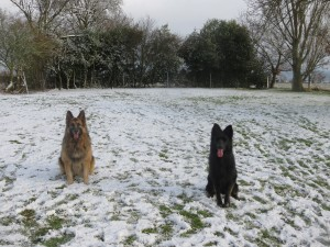 L-2-shepherds-in-the-snow-2882