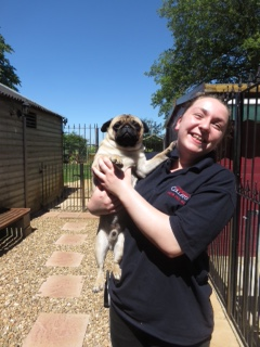 PHOTO - Megan with Pugsta